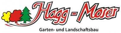 logo_homepage_text